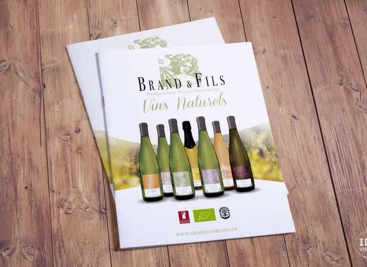 Création groupe IBS - Domaine Brand & Fils