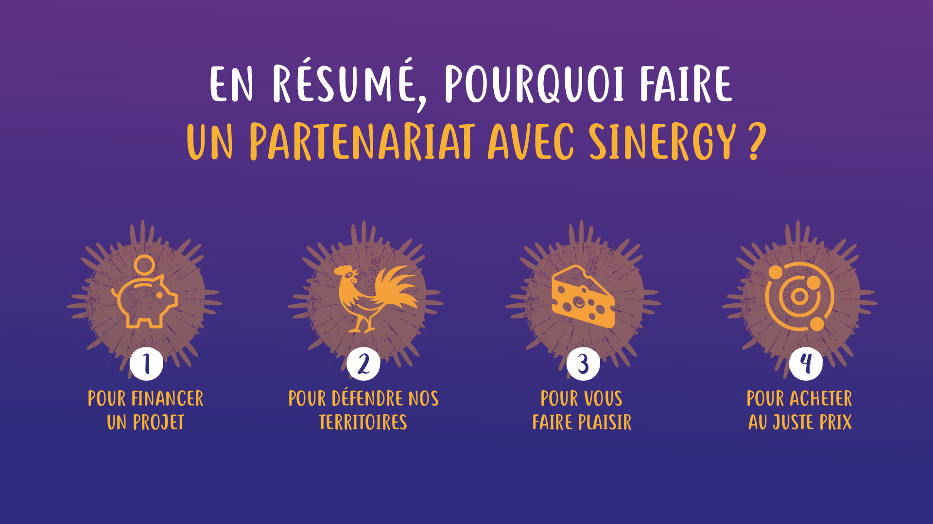 Réalisation IBS Visual - Sinergy - 5
